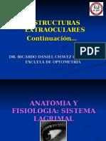 3.- Opto Morfo Glandula Lagrimal
