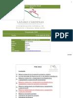 API Lazaro Cardenas POA 2016