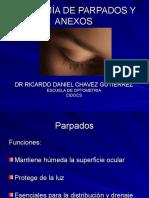 2.- OPTO MORFO-Anatomía Parpado