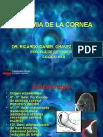 7.- Opto Morfo Anatomia y Fisiologia de La Cornea Yo
