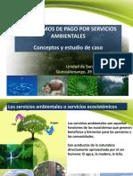 07 Ppt Conceptos Psa y Caso Olintepeque Quetzaltenango