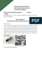 1 TAREA BIOTECNOLOGIA AMBIENTAL.docx