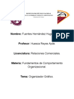 Oraganizador Gráfico-Comportamiento Organizacional