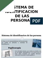 IDENTIFICACION PERSOLA.pptx