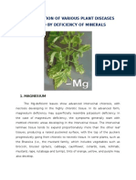 Indentification of various plant Diseases caused by deficiency of Minerals.docx