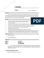 SAP Project Manager CV