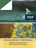 Polinizadores e Pesticidas Final