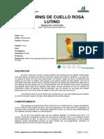 Ficha AGAPORNIS DE CUELLO ROSA LUTINO _Agapornis roseicollis_.pdf