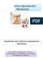 sistemareproductorfemenino-120712195522-phpapp02