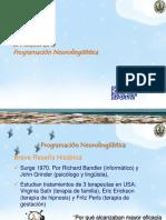 [PD] Documentos - El modelo de la PNL.pdf