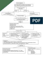 Esclerosis Múltiple Mapa Conceptual