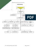 ORGANIGRAMA_DE_LA_USE[1].docx