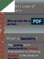 Psychology - Genetics (Gregor Mendel)