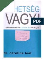 Vanga&#39