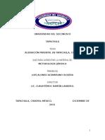 Tesis de Alienación Parental en Tapachula, Chiapas