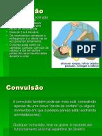 CONVULSAO