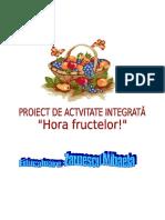 0proiectintegrata (1)