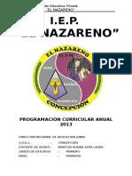 Programacion Curricular Anual 2013