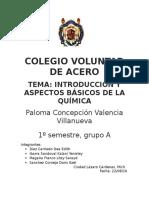 COLEGIO VOLUNTAD DE ACERO.docx