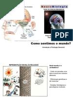 Aula14 .Fisiologia Sensoria Geral