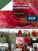 Cadena de Rosa de Corte Presentacic3b3n2007