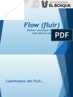 Presentación Flow