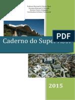 guia supervisor.pdf