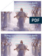 BRO. Dying You Destroyed Our Death