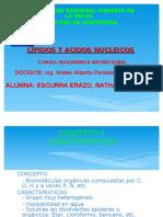 Lipidos y Aci. Nucleicos ( Nathaly )