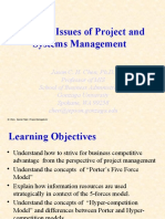 Strategic Issues of Project and Systems Mgt