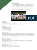 Resumen El Entrenamiento Por Áreas Funcionales en El Fútbol