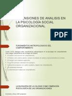 Dimensiones de Analisis en La Psicología Social Organizacional