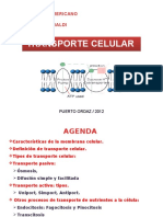 clasetransportecelulardiapositivas-130225194205-phpapp01