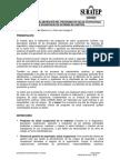 elaboracion_pso.pdf