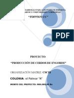 PROYECTO EL PALMAR -A- (BUENO).doc