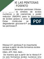 RUTA DE LAS PENTOSAS FOSFATO (1).pptx
