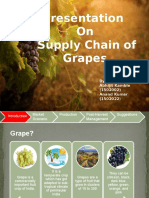 Supply Chain of Grapes_1502002_1502022.pptx