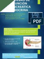Pruebas de Funcion Pancreatica Ppt..