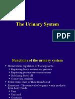 2304 Urinary