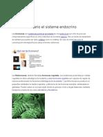 Glosario Sistema Endocrino