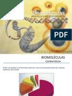 19. Biomoléculas