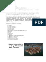 FISICA FUNDAMENTAL.docx