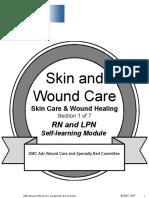 Skin Woundsec1