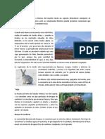 4.2 Biomas Terrestres