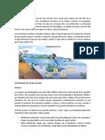 4. 1 Biomas acuáticos