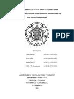 MAKALAH KELOMPOK 2.docx