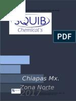 Propuesta Para Canacintra Chiapas 2016