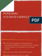 Patologia Vulvei Si Vaginului Prolaps Romana