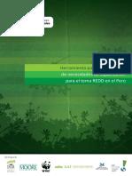 diagnostico_capacidades.pdf