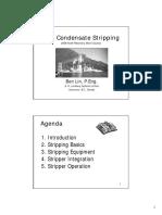 stripper info.pdf